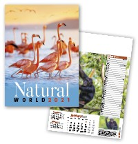 Natural World Wall Calendar